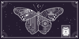 MWB Record Insert | Rosie Alyea